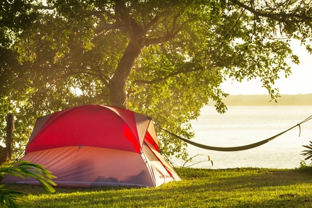 Camping Tent in Open Land